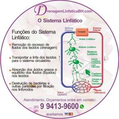 O que você precisa saber sobre o sistema linfático - a nova fronteira do bem-estar